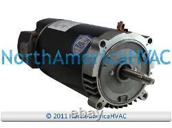 Climatek Round Flange Pool Spa Pump Motor 1.25 HP C48K2N143A9 C48K2N143B1