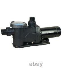 Everbilt 1.5 HP 230-Volt/115-Volt Pool Pump