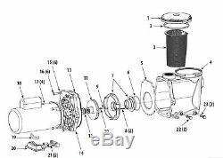 Waterway Champion 56frame in-ground POOL PUMP 3HP 230V 1-speed motor